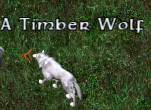 UO-Timber Wolf-ec.png