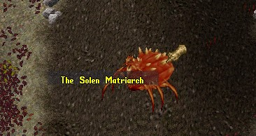 Red Solen Matriarch.jpg